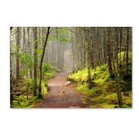 Mike Jones Photo 'Lubec Path' Canvas Art