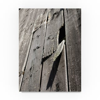 Thom Sivo 'Barn Walls' Canvas Art