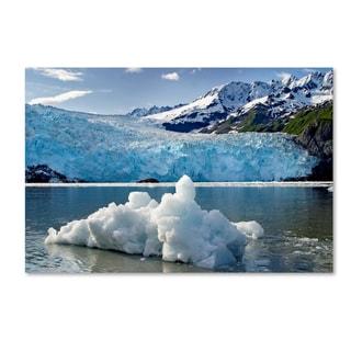 Mike Jones Photo 'Iceburg' Canvas Art
