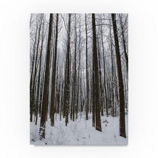 Thom Sivo 'Winter Tall Trees' Canvas Art