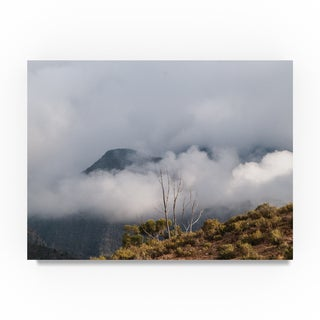 Thom Sivo 'Nature Preserve South Africa' Canvas Art