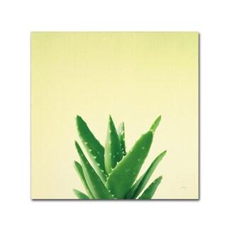 Felicity Bradley 'Succulent Simplicity V' Canvas Art