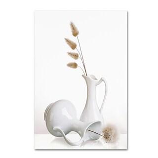 Aida Ianeva 'White' Canvas Art