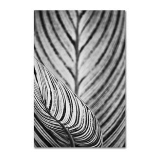 Geoffrey Baris 'So Striped 2' Canvas Art
