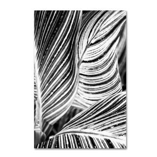 Geoffrey Baris 'So Striped' Canvas Art