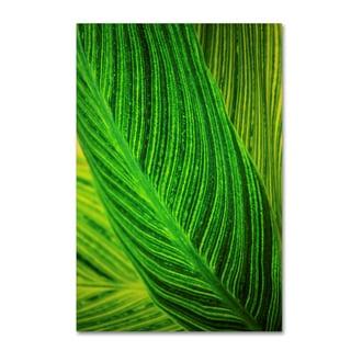 Geoffrey Baris 'So Green Striped 2 ' Canvas Art