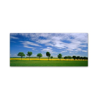 Robert Harding Picture Library 'Forest Scene' Canvas Art