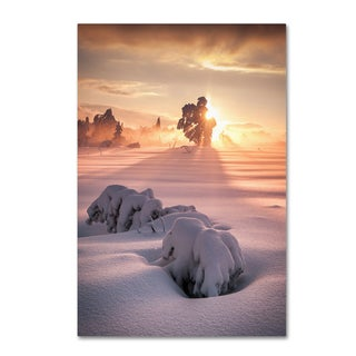 Andreas Wonisch 'After The Storm' Canvas Art