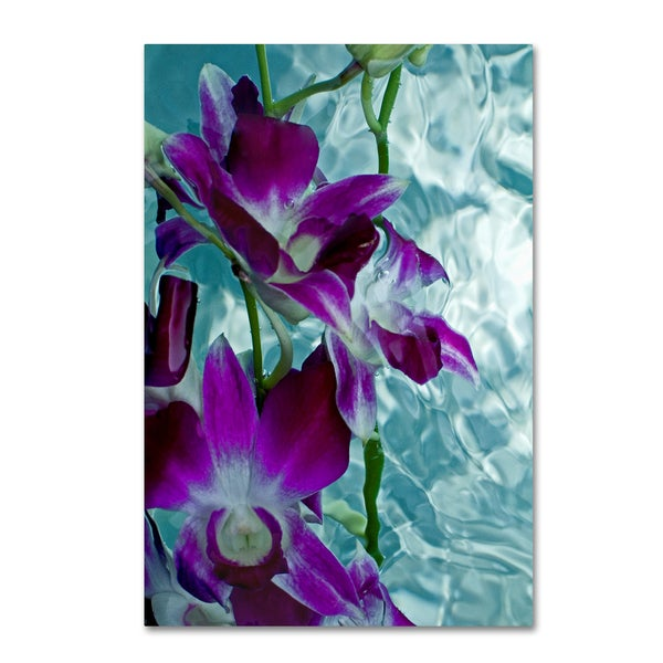 Geoffrey Baris 'Floating Orchid' Canvas Art