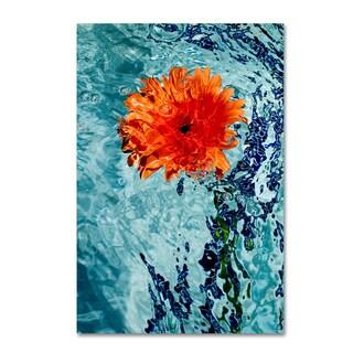 Geoffrey Baris 'Floating Orange Mum 2' Canvas Art