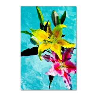 Geoffrey Baris 'Floating Lilies 2' Canvas Art