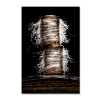 Joe Felzman Photography 'Hairy Spools' Canvas Art