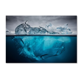 Justin Hofman 'Buoyancy' Canvas Art