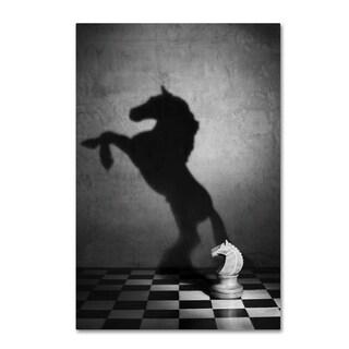 Victoria Ivanova 'The Soul Of A Mustang' Canvas Art