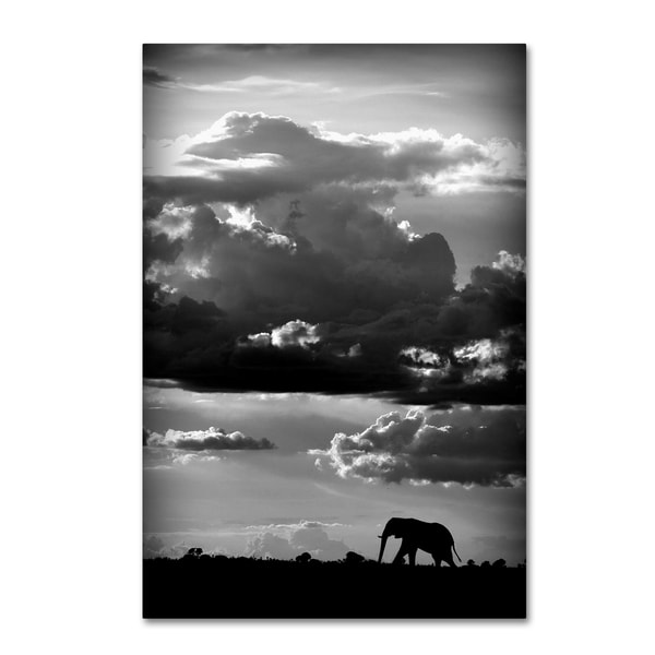 Wildphotoart 'He Walks Under An African Sky' Canvas Art
