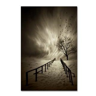 David Senechal 'Stairs To The Sanctuary' Canvas Art