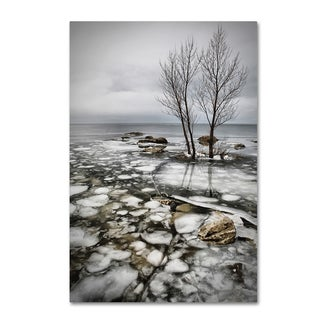 Vedran Vidak 'Frozen Lake' Canvas Art
