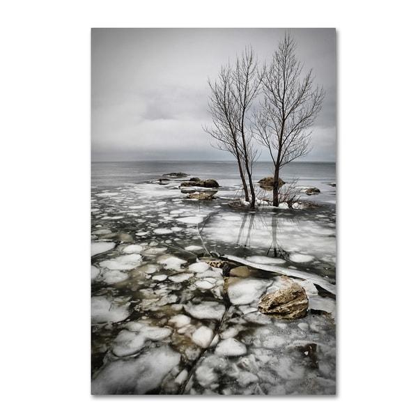 Vedran Vidak 'Frozen Lake' Canvas Art