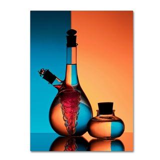 Aida Ianeva 'Oil And Vinegar' Canvas Art