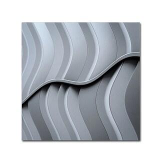 Luc Vangindertael Lagrange 'Just Form No Function' Canvas Art