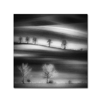 Piotr Krol 'Trees' Canvas Art