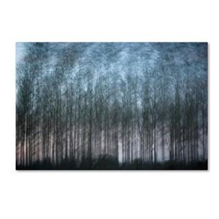 Geoffrey Ansel Agrons 'Verschrankung' Canvas Art