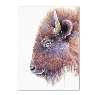 Michelle Faber 'Spirit Of The West Buffalo' Canvas Art