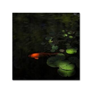 Geoffrey Ansel Agrons 'Sounding' Canvas Art
