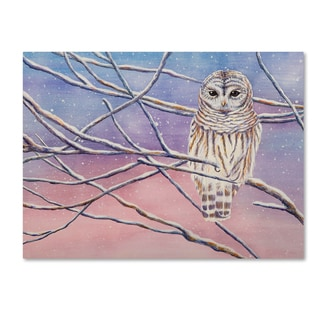 Michelle Faber 'Snowy Barred Owl' Canvas Art