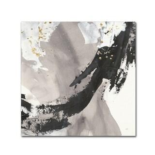 Chris Paschke 'Galaxy II' Canvas Art