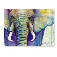 Michelle Faber 'Elephant Face' Canvas Art