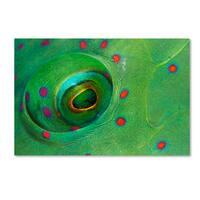 Anna Shvab 'Fish Eye' Canvas Art