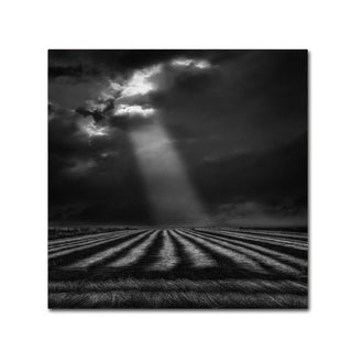 Yvette Depaepe 'The Secure Ground Of Home ' Canvas Art