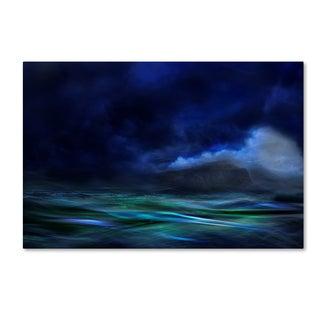 Willy Marthinussen 'The Island' Canvas Art