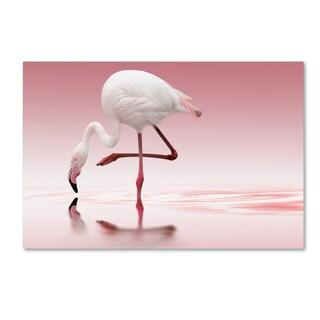 Doris Reindl 'Flamingo' Canvas Art