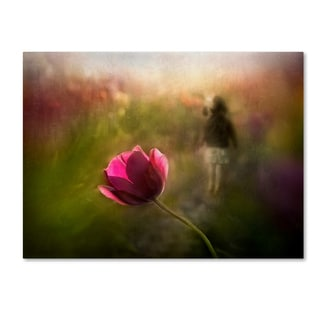 Shenshen Dou 'A Pink Childhood Memory' Canvas Art