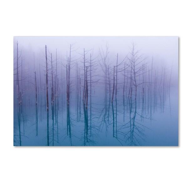 Osamu Asami 'Misty Blue Pond' Canvas Art