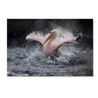 Antje Wenner-Braun 'Bathing Fun ' Canvas Art