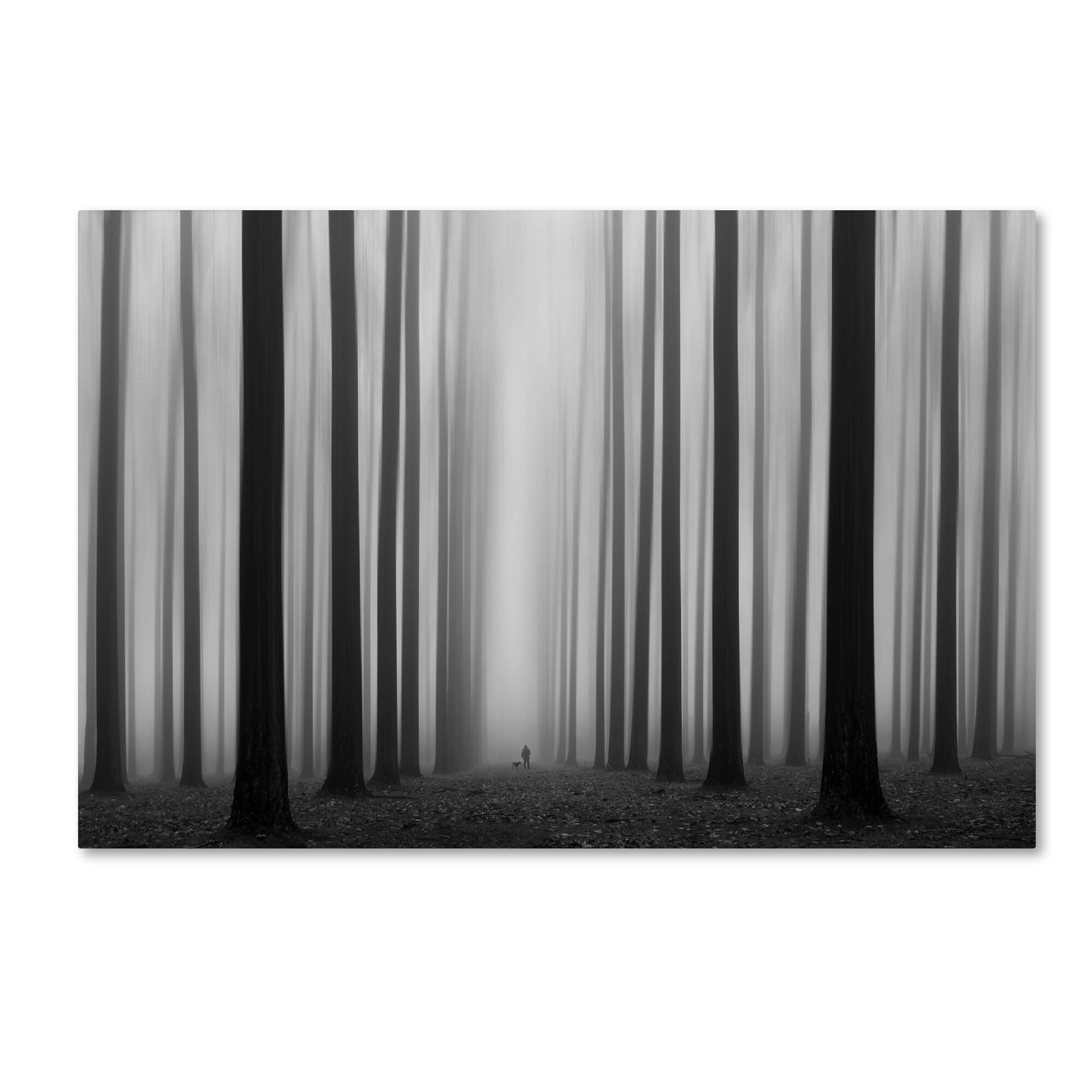 Trademark Jochen Bongaerts 'Labyrinth' Canvas Art (30x47)...