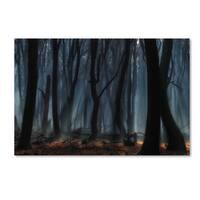 Jan Paul Kraaij 'Dancing Trees' Canvas Art