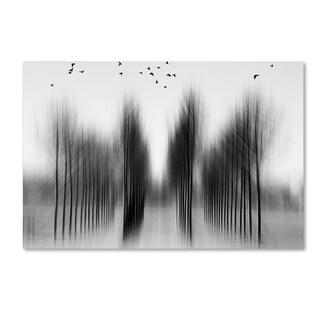 Roswitha Schleicherschwarz 'Tree Architecture' Canvas Art