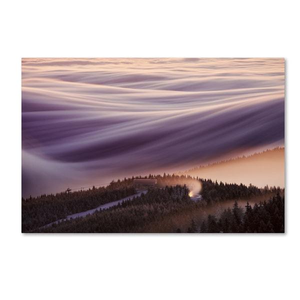 Martin Rak 'Whipped Cream' Canvas Art