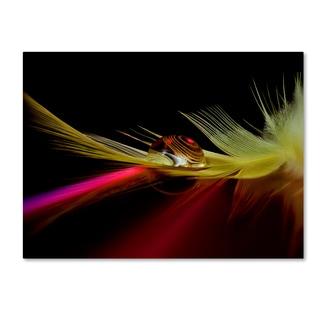 Aida Ianeva 'Colors In The Drop' Canvas Art
