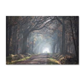Anna Cseresnjes 'Forest Walk' Canvas Art