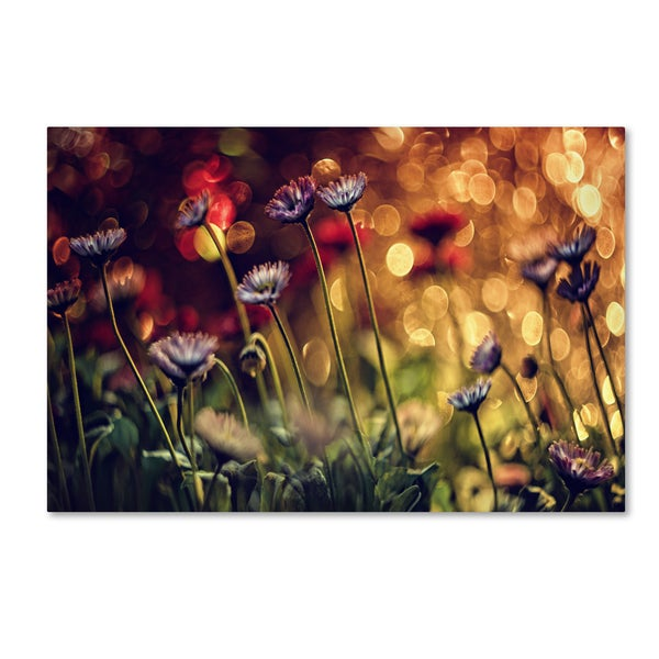 Dimitar Lazarov 'Flowers' Canvas Art
