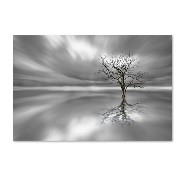 Leif Londal 'Ghost Tree' Canvas Art