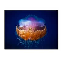 Luckyguy 'Fried Egg Jellyfish' Canvas Art
