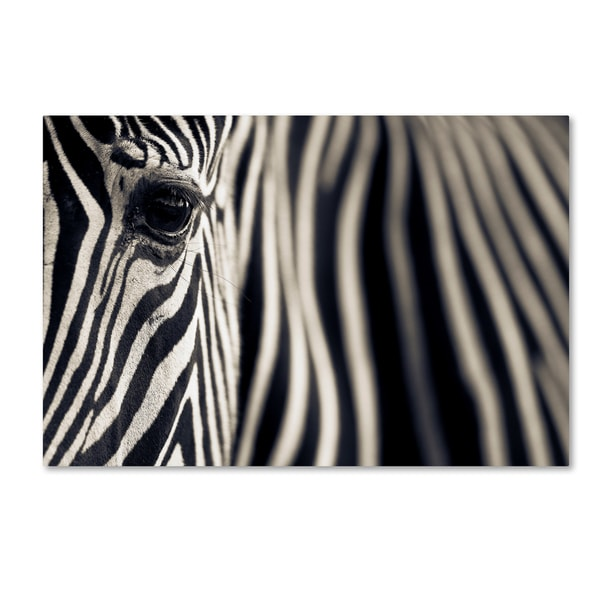 Mario Moreno 'Eye & Stripes' Canvas Art