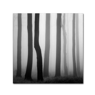 Martin Rak 'Trunks' Canvas Art