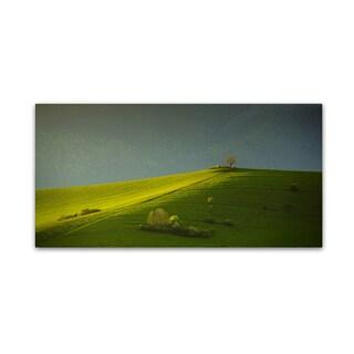 Matej Rumansky 'Painted With Light  ' Canvas Art